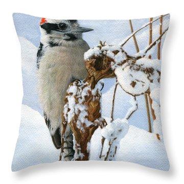 Downy Woodpecker  Throw Pillow by Ken Everett