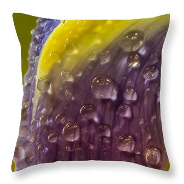 Drops Of Bliss Throw Pillow by Bill Tiepelman
