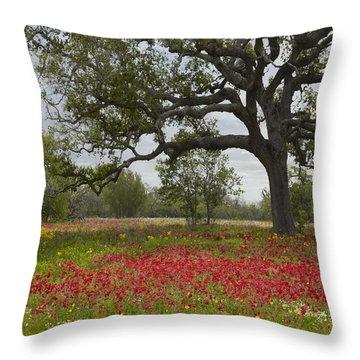 Drummonds Phlox Meadow Near Leming Texas Throw Pillow by Tim Fitzharris