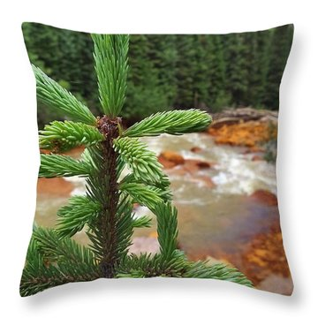 Durango Pass Throw Pillow by Skip Hunt