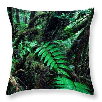 Dwarf Forest El Yunque Throw Pillow by Thomas R Fletcher