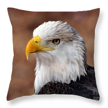 Eagle 25 Throw Pillow by Marty Koch