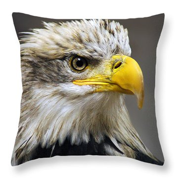 Eagle Throw Pillow by Harry Spitz