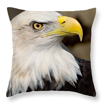 Eagle Power Throw Pillow by William Jobes