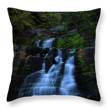 Early Morning Falls Throw Pillow by Karol Livote