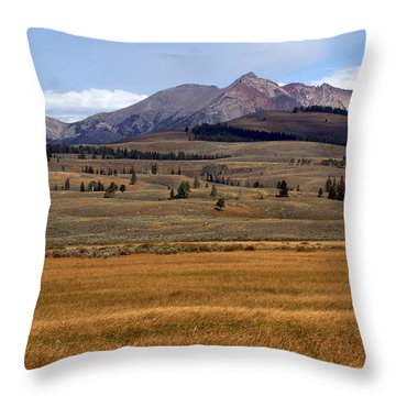 Electric Peak 2 Throw Pillow by Marty Koch