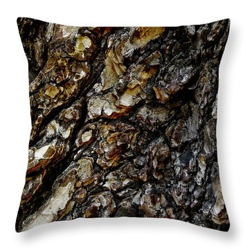 Throw Pillow featuring the photograph Elm Tree Bark Pattern by Frank Tschakert