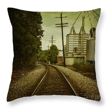 Endless Journey Throw Pillow by Andrew Paranavitana