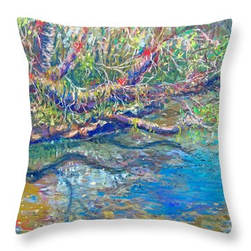 Estero River West Throw Pillow by Laurie Paci