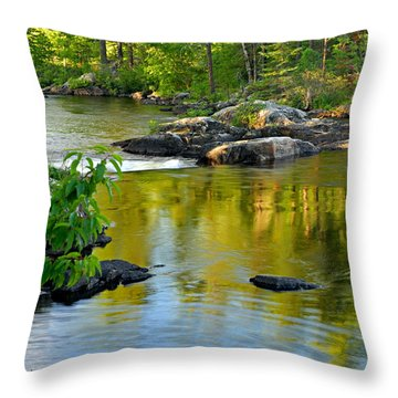 Evening Reflections At Lower Basswood Falls Throw Pillow by Larry Ricker
