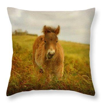Exmoor Wild Pony Throw Pillow by Carla Parris