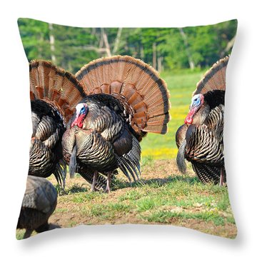 Eyes On The Prize Throw Pillow by Todd Hostetter