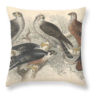 Falcons Throw Pillow by Oliver Goldsmith