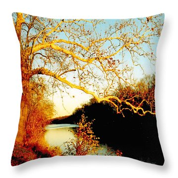 Fall At The Raritan River In New Jersey Throw Pillow by Christine Till