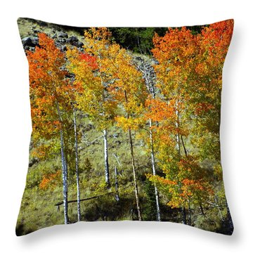 Fall In Colorado Throw Pillow by Marty Koch