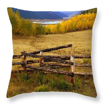 Fall In The Rockies 2 Throw Pillow by Marty Koch