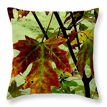 Fall Leaves Throw Pillow by Julie Grace