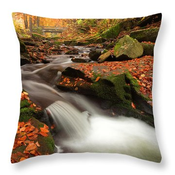 Fall Power Throw Pillow by Evgeni Dinev