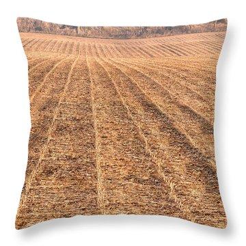 Farm Field Fog Throw Pillow by Steve Gadomski