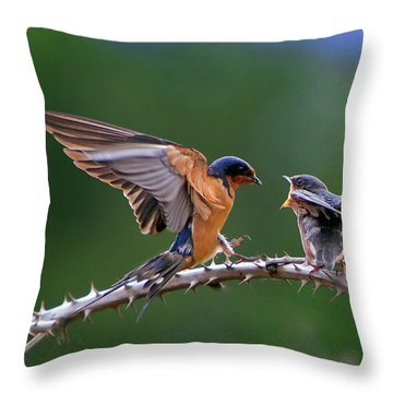 Feed Me Throw Pillow by William Lee