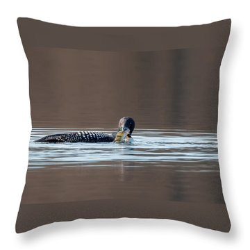 Feeding Common Loon Throw Pillow by Bill Wakeley