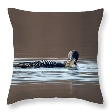 Feeding Common Loon Square Throw Pillow by Bill Wakeley