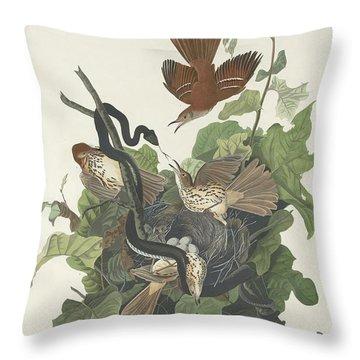 Ferruginous Thrush Throw Pillow by John James Audubon