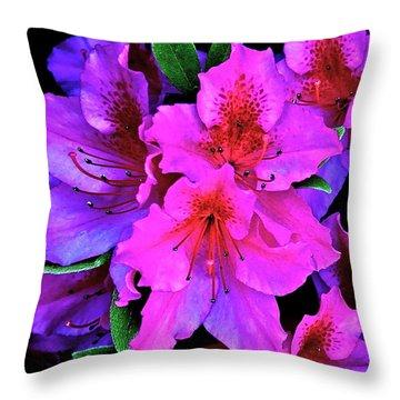 Festive Azalea Throw Pillow by Gwyn Newcombe