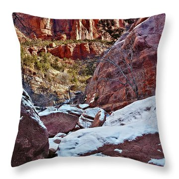 Fire And Ice Throw Pillow by Christopher Holmes