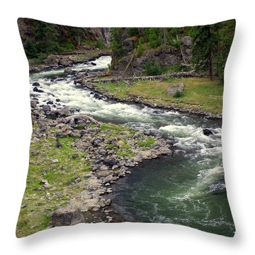 Firehole River 2 Throw Pillow by Marty Koch