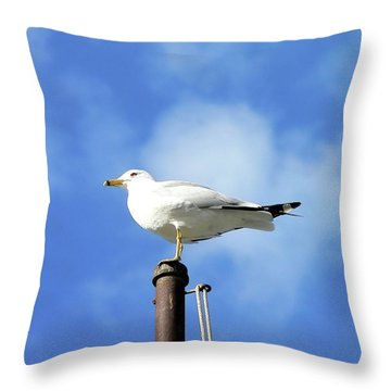 Flagpole Gull Throw Pillow by Al Powell Photography USA