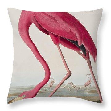Flamingo Throw Pillow by John James Audubon