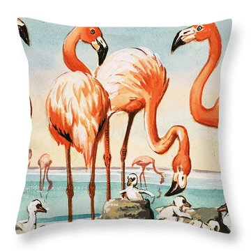 Flamingoes Throw Pillow by English School