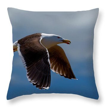 Flight Throw Pillow by Murray Bloom