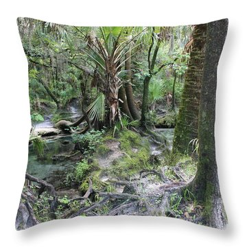 Florida Landscape - Lithia Springs Throw Pillow by Carol Groenen