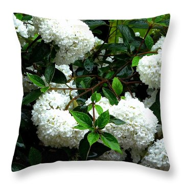 Flower Snow Balls Throw Pillow by Valerie Ornstein
