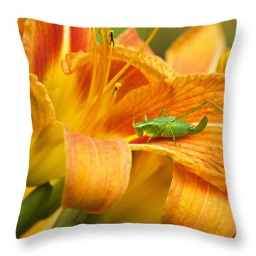 Flower With Company Throw Pillow by Christina Rollo