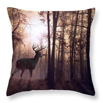 Foggy Morning In Missouri Throw Pillow by Bill Stephens