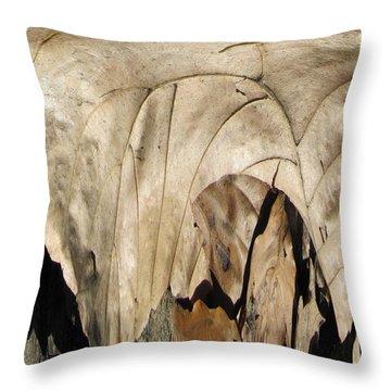 Forest Floor Throw Pillow by Tim Allen