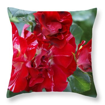 Fourth Of July Roses Throw Pillow by Jacqueline Russell
