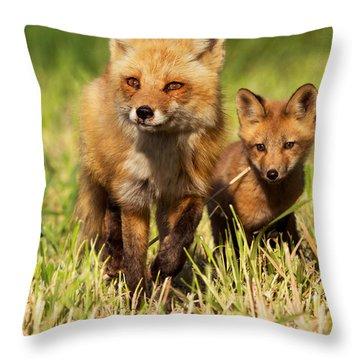 Fox Family Throw Pillow by Mircea Costina Photography