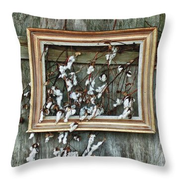 Framed Cotton Throw Pillow by Michael Thomas