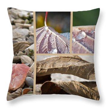 Frozen Dew Throw Pillow by Lisa Knechtel