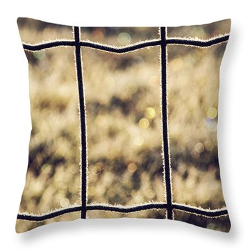 Frozen Fence Throw Pillow by Wim Lanclus