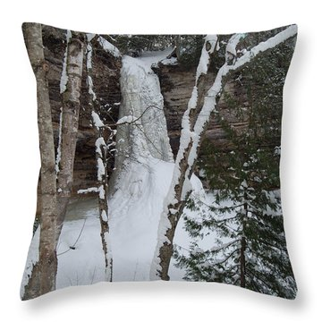 Frozen Throw Pillow by Michael Peychich