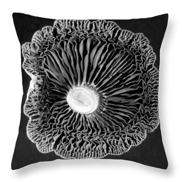 Fungi Two Throw Pillow by Jim Occi