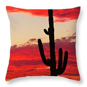 Giant Saguaro  Southwest Desert Sunset Throw Pillow by James BO  Insogna