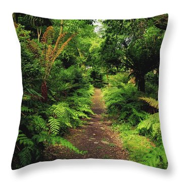 Glanleam, Co Kerry, Ireland Pathway Throw Pillow by The Irish Image Collection