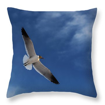 Glider Throw Pillow by Don Spenner