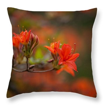 Glorious Blooms Throw Pillow by Mike Reid